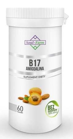 Amigdalina b17 (ekstrakt z pestek moreli 5:1) 60 kapsułek (260 mg)